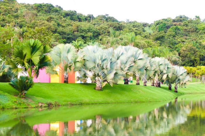 Excepcional Inhotim Institute Picture 17 | Brazil CM46