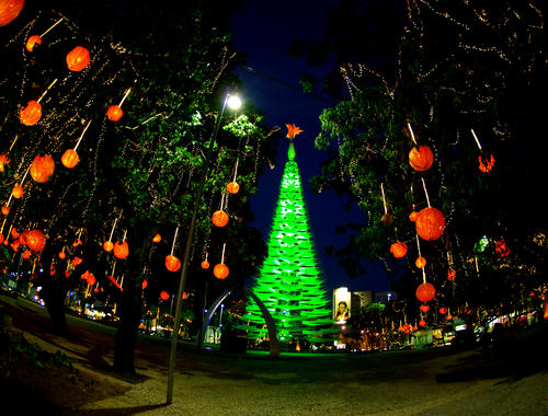 Christmas In Brazil.Brazil Christmas Decorations Thecannonball Org