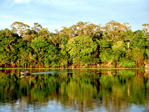 Silves Island in the Amazon region