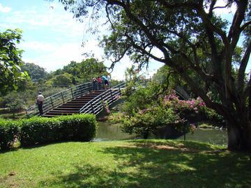Ibirapuera Park | Brazil